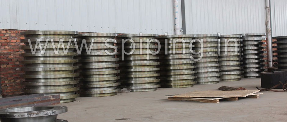 stainless steel 304L Flanges manufacturers in india