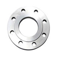 Stainless Steel 304L A182 Plate Flanges
